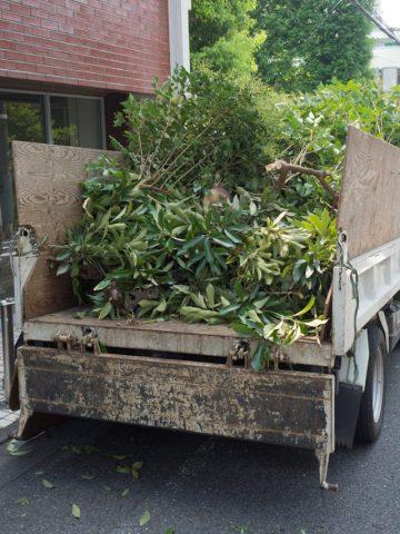 庭木を処分するために運ぶトラック