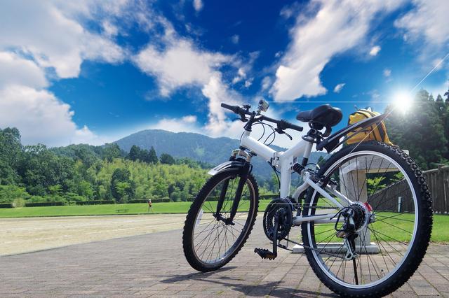 野原と自転車
